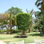 Ägypten 016